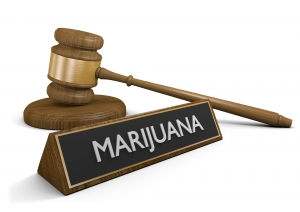 marijuana lawyer Iowa City